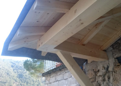 ht-construction-bois-auvents-extension-duniere3